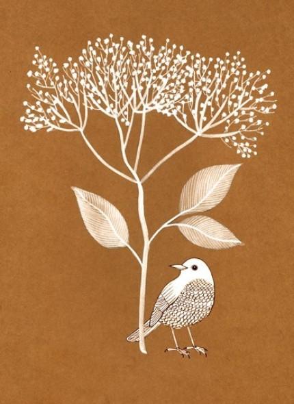 White Bird  by Geninne